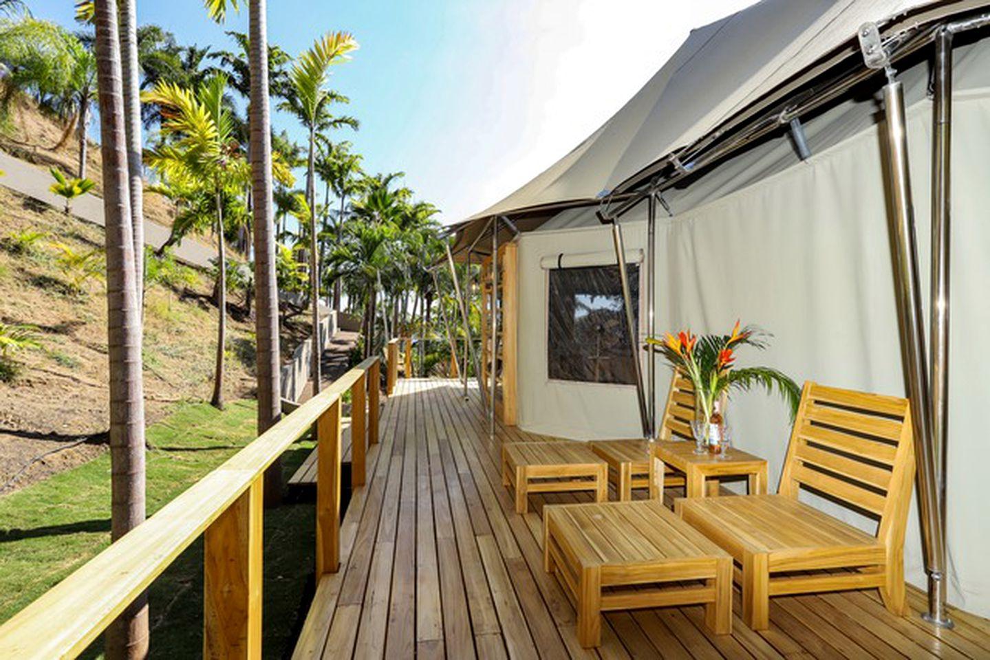 Tropical Tents